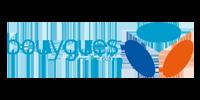 Bouygues télécom 6 Domoscio